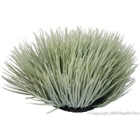 Spinifex Grey Plant Reptile 30cm Round