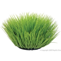 Spinifex Green Plant Reptile 40cm Round