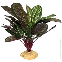 Plant Reptile Broadleaf Green/Purple Red with Rock Base