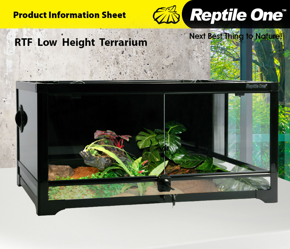 RTF Low Height Terrarium