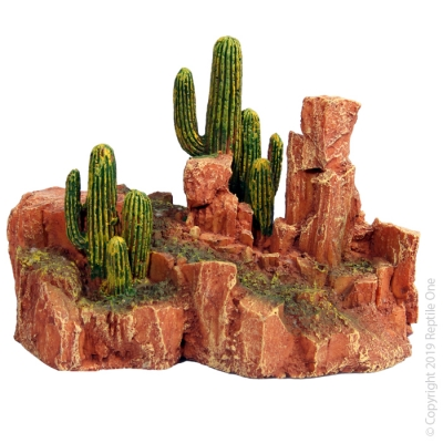 Large Cactus Garden with Resin Base
