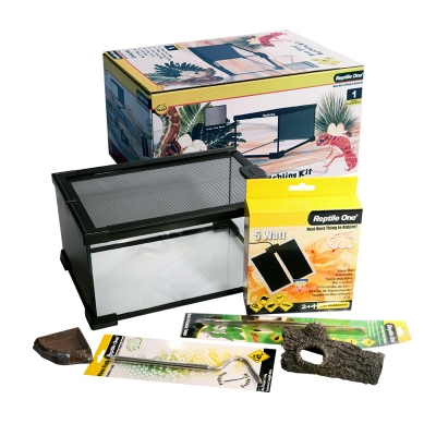 Your First Hatchling Kit